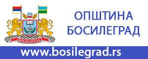 Општина Босилеград
